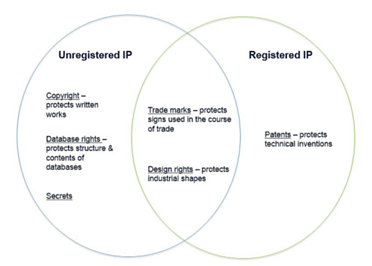 Figure 1 The general categories of intellectual property.