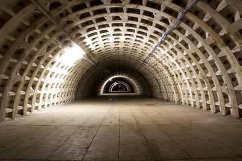Growing Underground WWII Tunnel-1