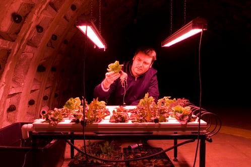 Richard Ballard Growing Underground
