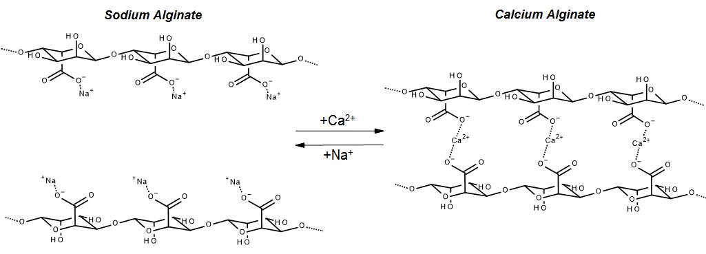 sodium calcium alginate